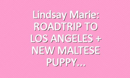 Lindsay Marie: ROADTRIP TO LOS ANGELES + NEW MALTESE PUPPY